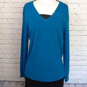 Talbots pure Merino Wool long sleeve V neck sweate
